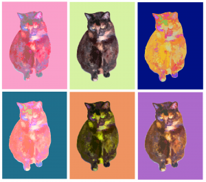 Andy Warhol meets Willow Kitty